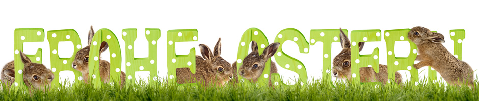 """""""Frohe Ostern 2018"""""""